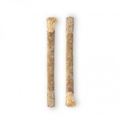 Miswak - zubní kartáček